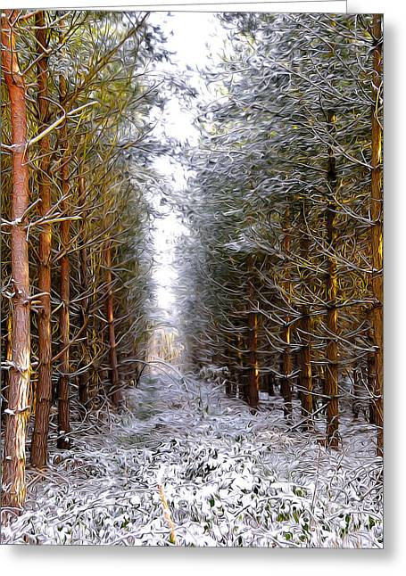 Winter Forest Greeting Card by Svetlana Sewell