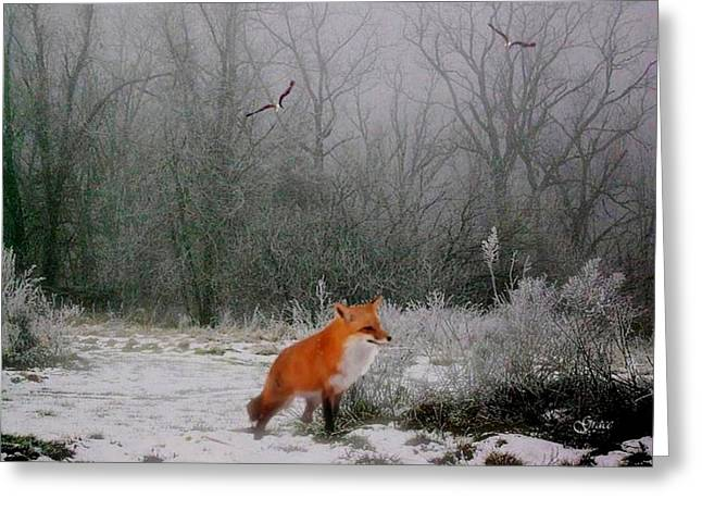 Winter Fox Greeting Card by Julie Grace