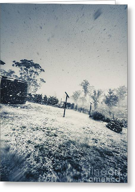 Winter Freeze Greeting Card by Jorgo Photography - Wall Art Gallery