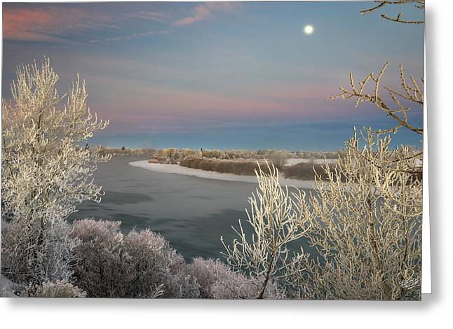 Winter Frost And Color Greeting Card by Leland D Howard
