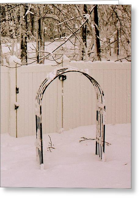 Nature Abstract Greeting Cards - Winter Garden Greeting Card by Kristine Betts
