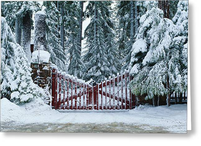 Winter Gate After Snowstorm, California Greeting Card