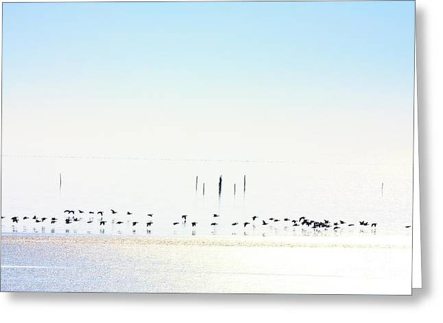 Winter Geese Frozen Ice Greeting Card