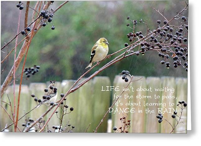 Winter Goldfinch In The Rain With Quotation Greeting Card