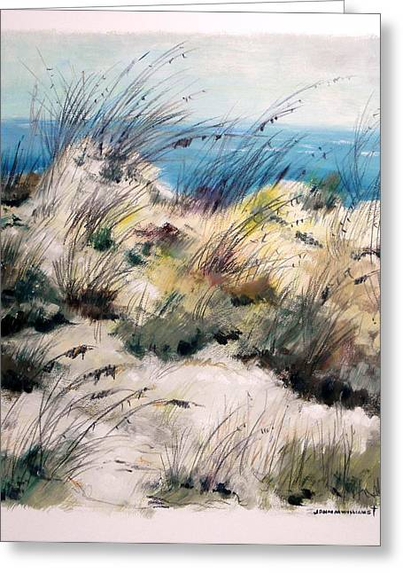 Greeting Card featuring the painting Winter Grasses by John Williams
