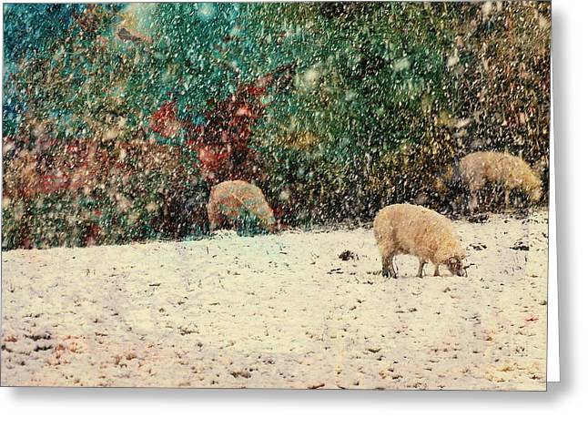 Winter Graze Greeting Card