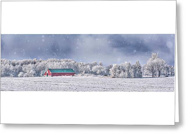 Winter Grey County Greeting Card