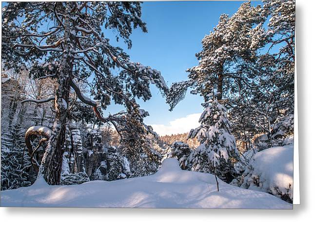Winter Heart. Saxon Switzerland Greeting Card