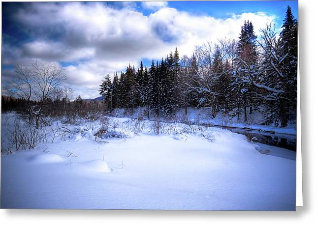 Greeting Card featuring the photograph Winter Highlights by David Patterson