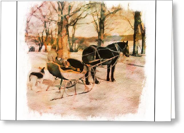 Winter Horse Sled Greeting Card