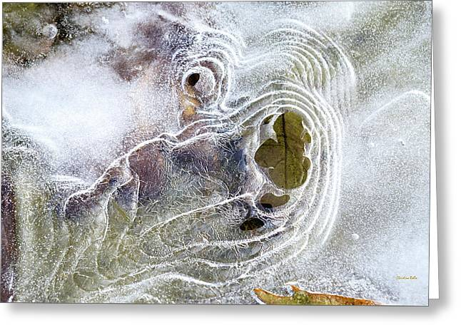 Greeting Card featuring the photograph Winter Ice by Christina Rollo