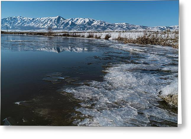 Winter Ice Flows Greeting Card by Justin Johnson
