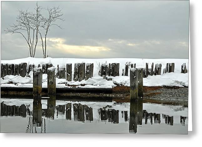 Winter In Birch Bay Greeting Card by Matthew Adair
