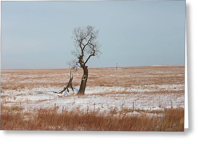 Winter In Kansas Greeting Card