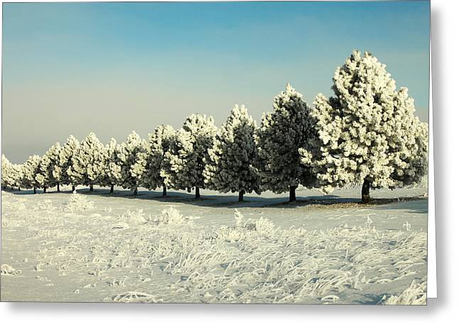 Winter In Montana Greeting Card