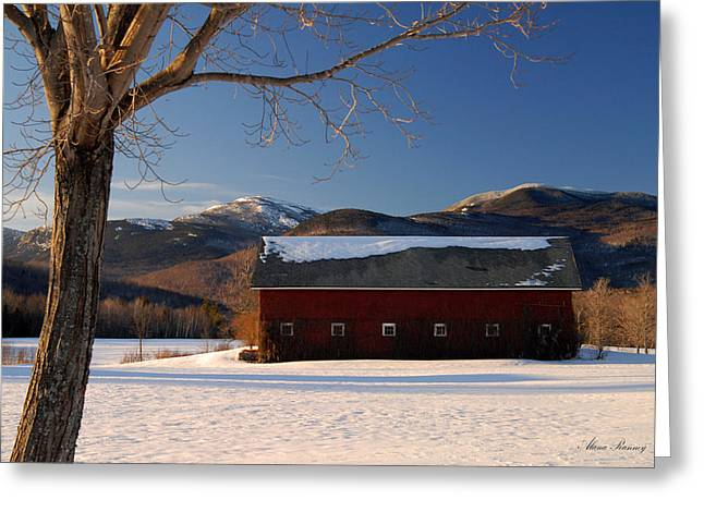 Greeting Card featuring the photograph Winter In New England by Alana Ranney