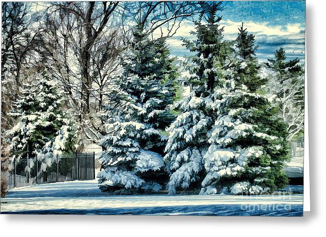 Winter In New England Greeting Card by Judy Palkimas