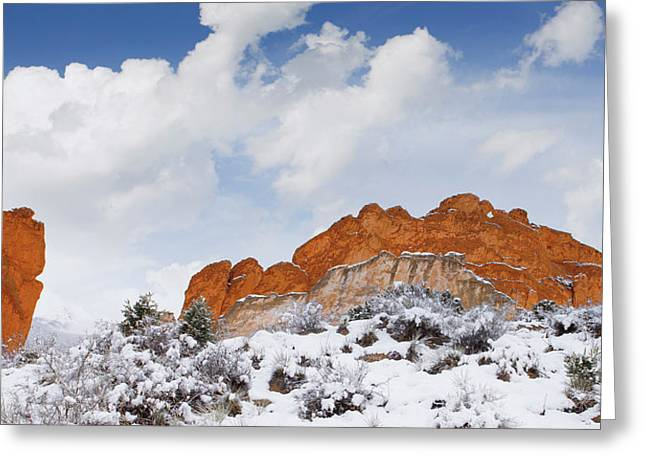 Greeting Card featuring the photograph Winter In Spring by Tim Reaves