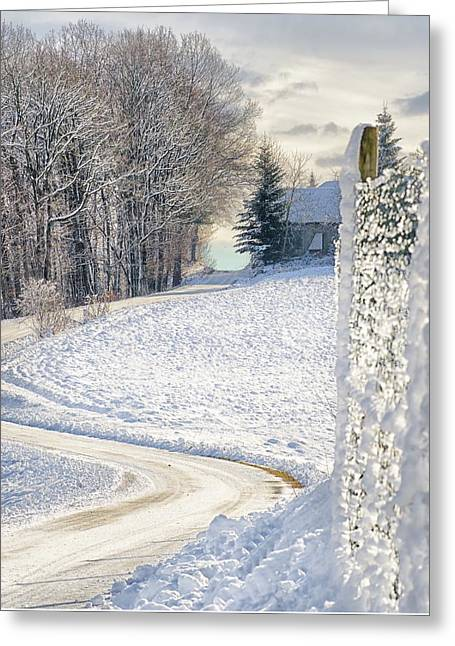 Winter In Styria  Greeting Card