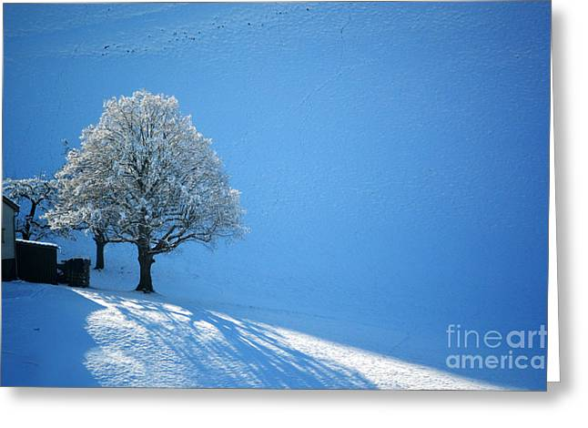 Winter In Switzerland - Snow And Sunshine Greeting Card
