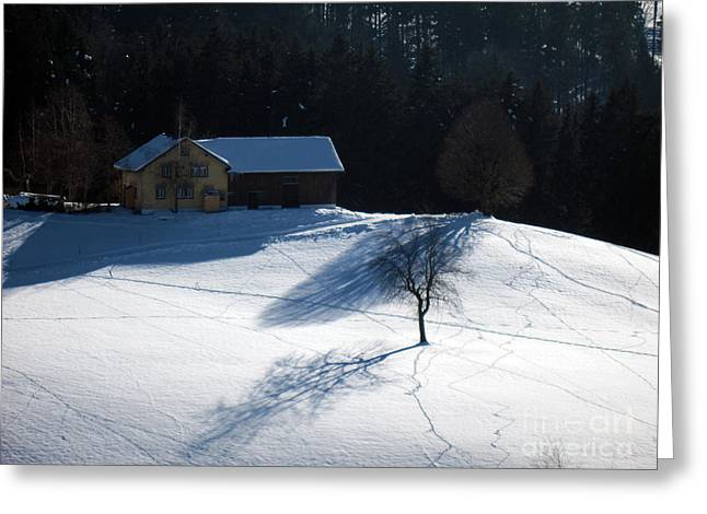 Winter In Switzerland - Tracks In The Snow Greeting Card