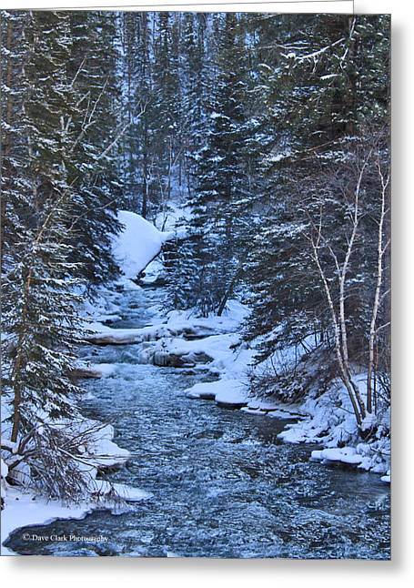 Winter In The Black Hills Greeting Card by Dave Clark