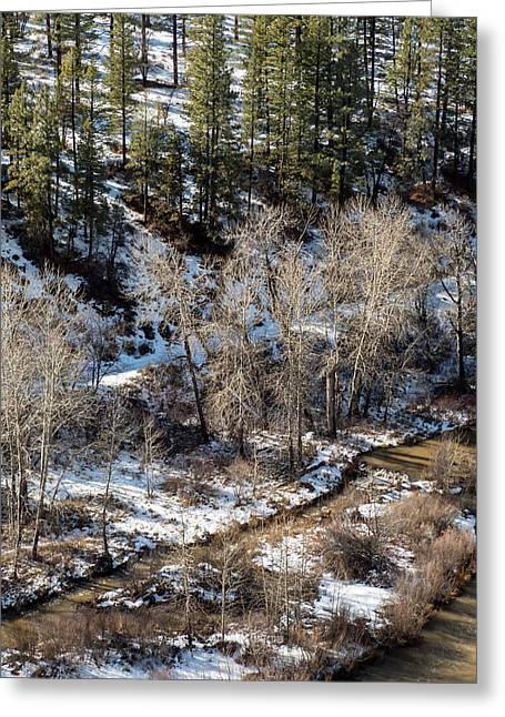 Greeting Card featuring the photograph Winter In The Susan River Canyon by The Couso Collection