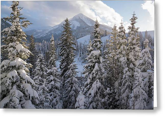 Winter In The Wasatch Greeting Card