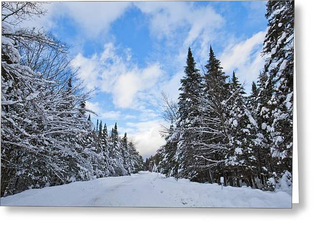 Winter In Thendara New York Greeting Card by David Patterson