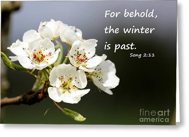 Winter Is Past Greeting Card