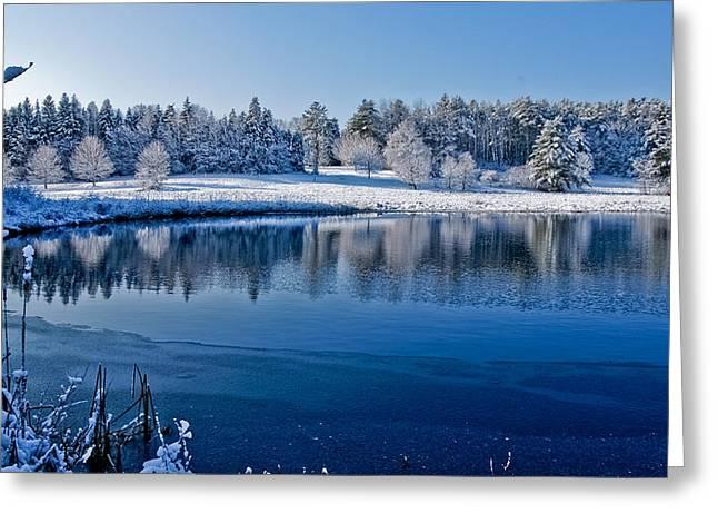 Winter Lake Scene 2 Greeting Card by Edward Myers