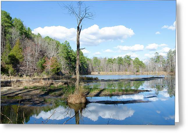 Winter Lake View Greeting Card by George Randy Bass