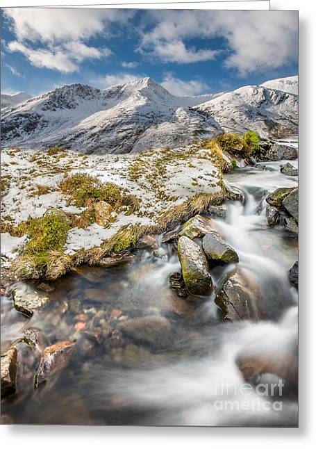Winter Landscape Greeting Card by Adrian Evans