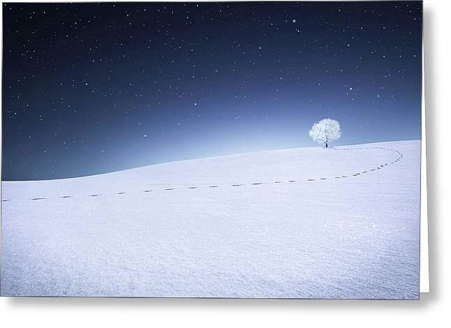 Greeting Card featuring the photograph Winter Landscape by Bess Hamiti