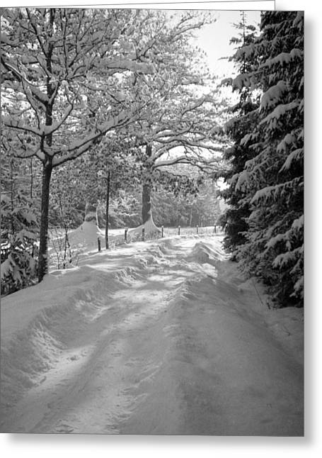 Winter Landscape  Christmas Card Greeting Card