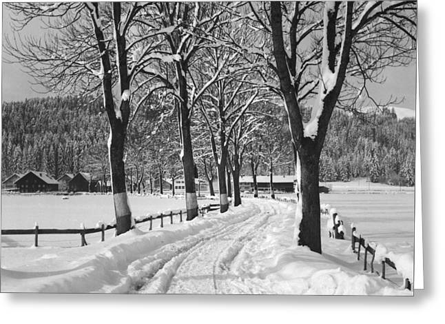 Winter Landscape Greeting Card by German School