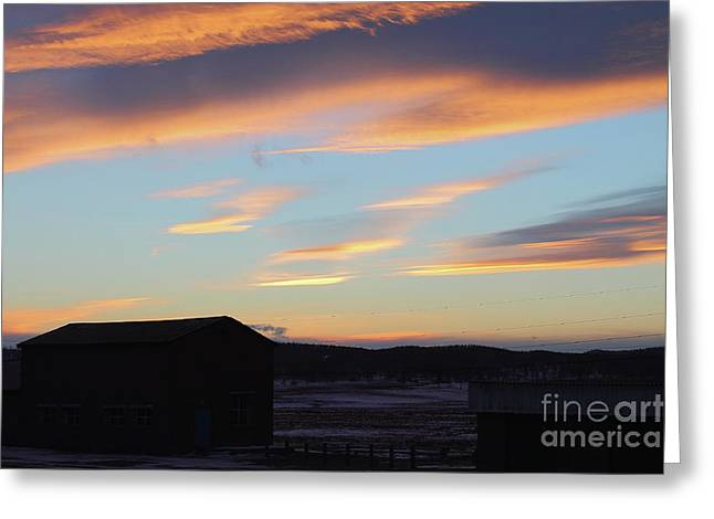 Winter Landscape In Sunset. Greeting Card by Mariia Kilina