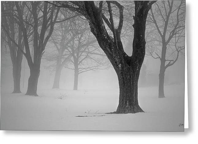 Winter Landscape V Greeting Card