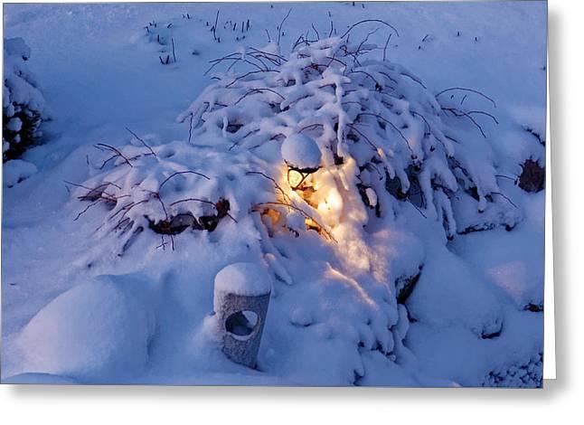 Winter Light Greeting Card