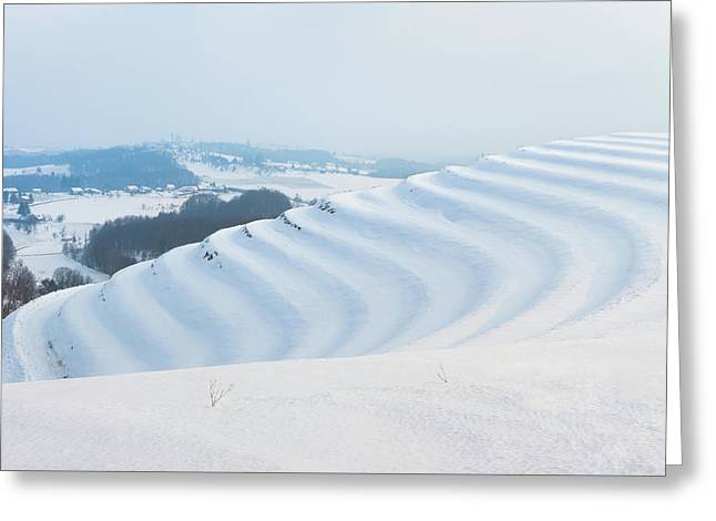 Winter Lines Greeting Card