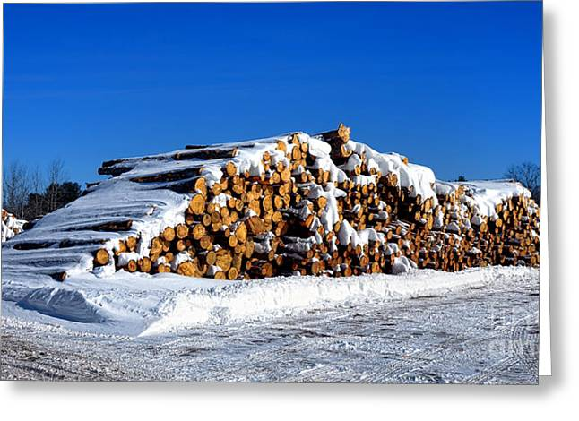 Winter Logs Greeting Card by Olivier Le Queinec