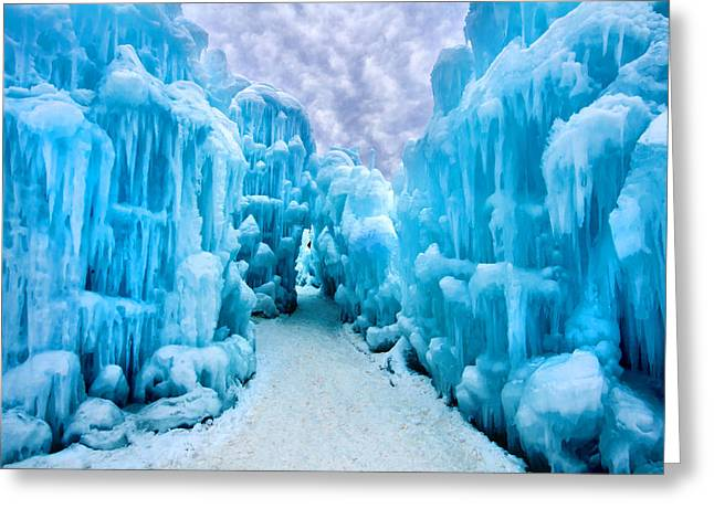 Winter Majesty Greeting Card by Greg Fortier