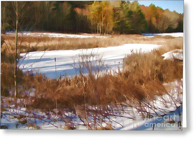 Winter Marsh Greeting Card by Betsy Zimmerli