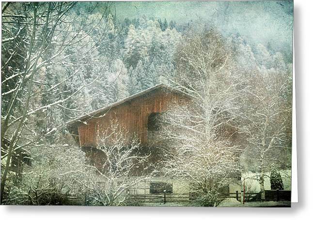 Winter Mood Greeting Card