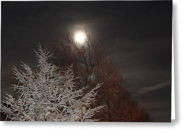 Winter Moon Greeting Card by John Adams