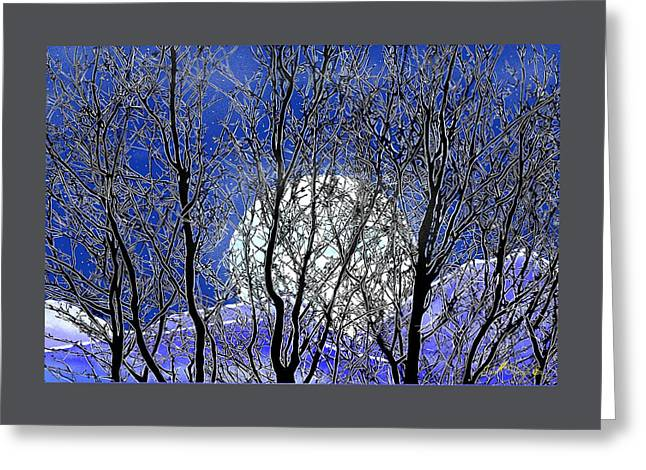Winter Moon Greeting Card