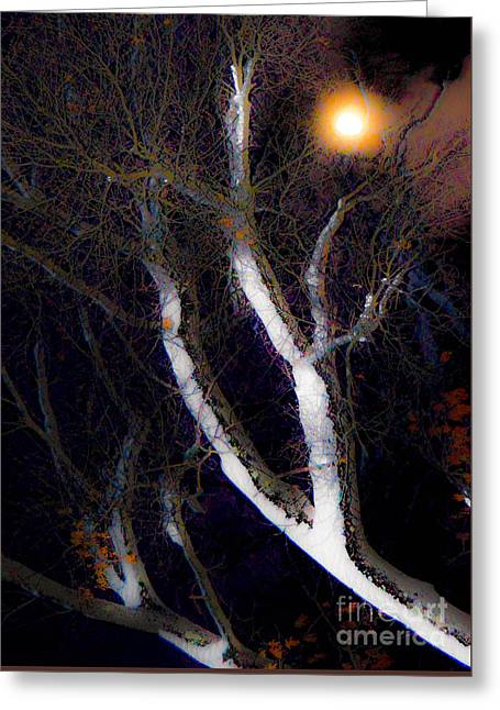 Winter Moon Greeting Card by Sabrina Ramina