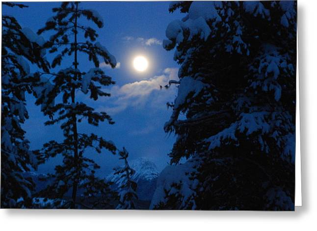 Winter Moonlight Greeting Card