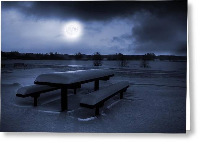 Winter Moonlight Greeting Card by Jaroslaw Grudzinski