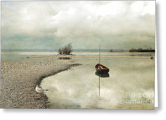 Greeting Card featuring the photograph Winter Morning By The Lake by Chris Armytage
